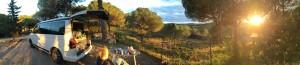 VW T5 California Camping Frankreich November - Sonnenuntergang Lézignan Carcassonne Bizanet