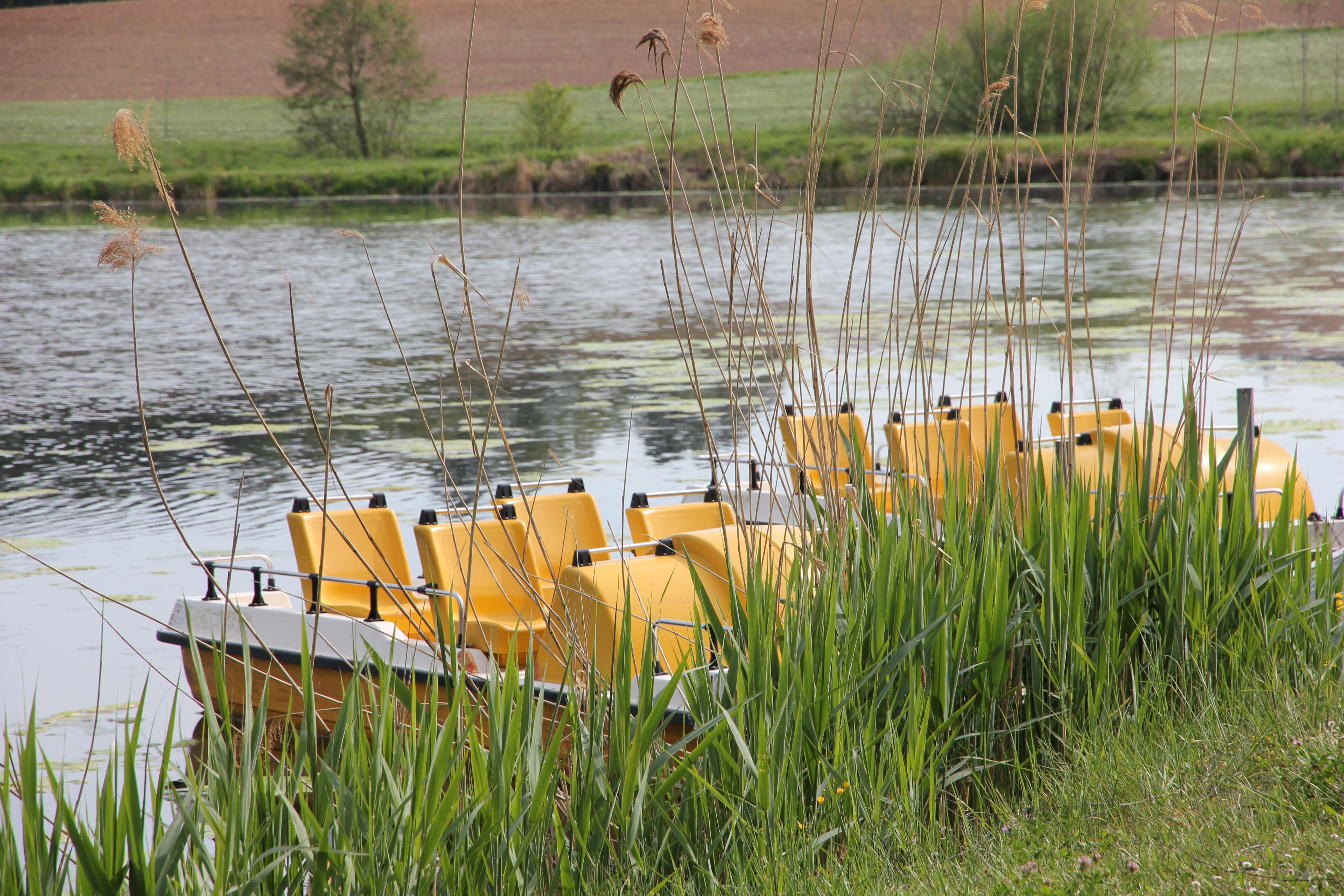 VW_T5_ California_Camping_Deutschland_Hammerschmiedesee_See_Tretboote
