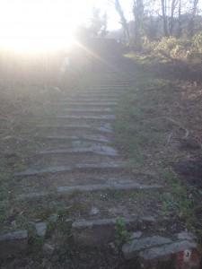 VW_T5_ California_Camping_Italien_Reisetipps_Bericht_Cinque Terre_ Treppen_Nationalpark_5 terre