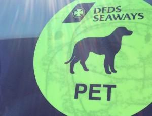 VW T5 California Fähre UK Großbritannien Einreise Hund Aufkleber Bus Auto Sticker