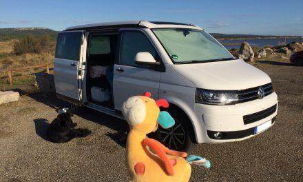 Autos, Lkw & Busse Motiviert Vw Volkswagen T6 Multivan Personen Transporter Schwarz T5 Ab 2 Facelift 2015 .. Modellbau