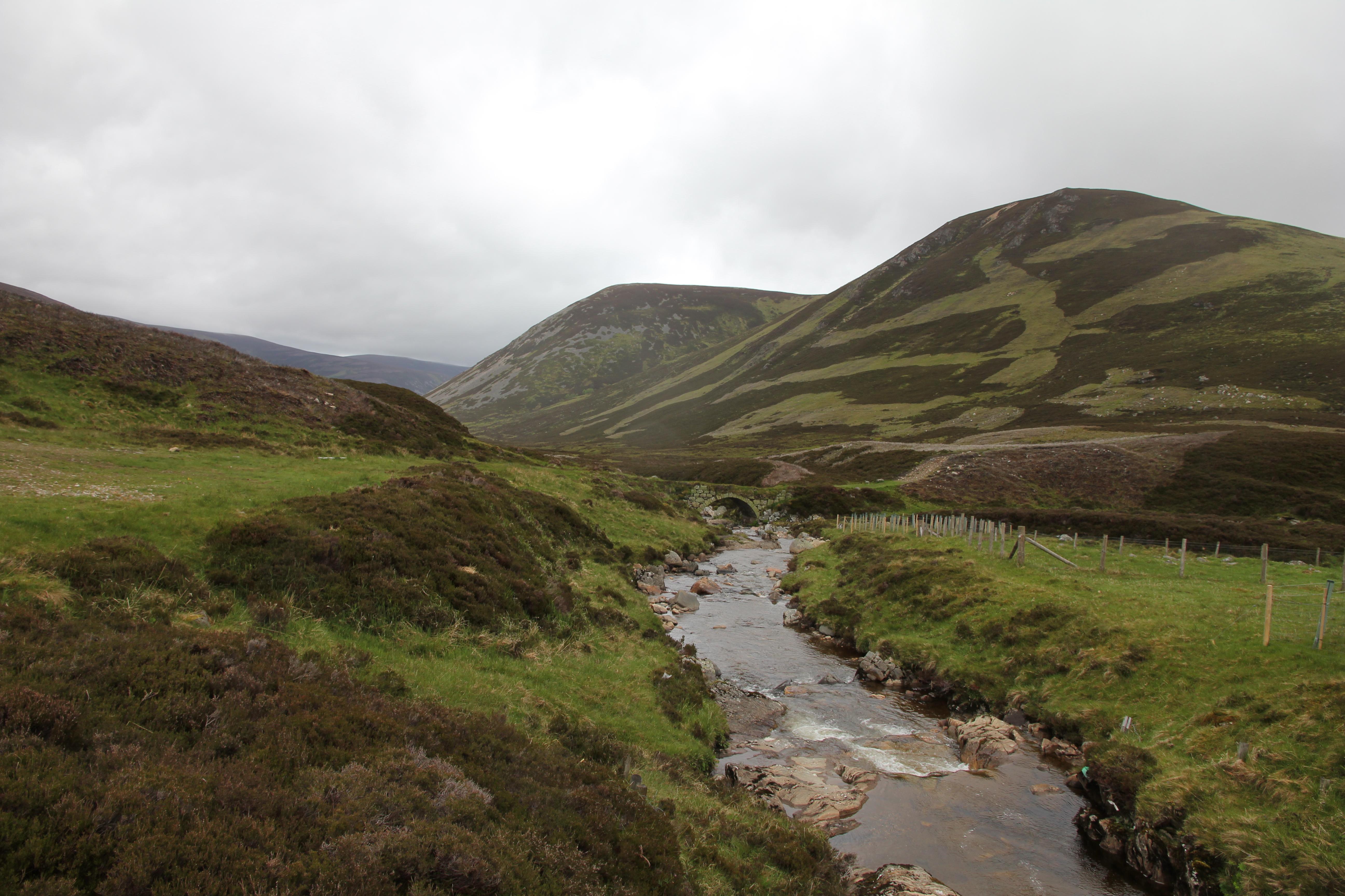 VW T5 T6 California Schottland Roadtrip 2015 Wildcamping Cairngorms Highlands